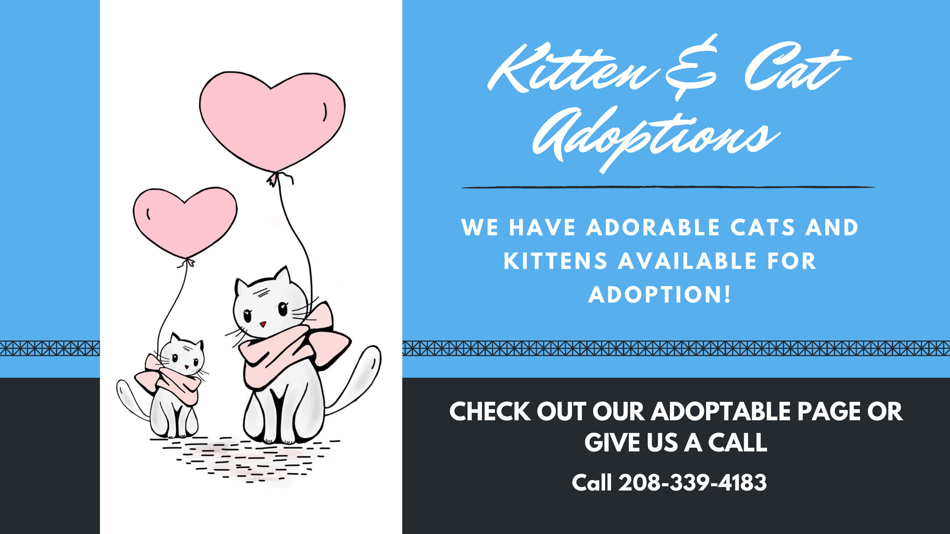 Click image to view adoptable cats & kittens