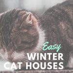 easy DIY winter cat houses - Portneuf Animal Welfare Society
