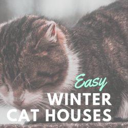 Easy DIY Winter Cat Houses